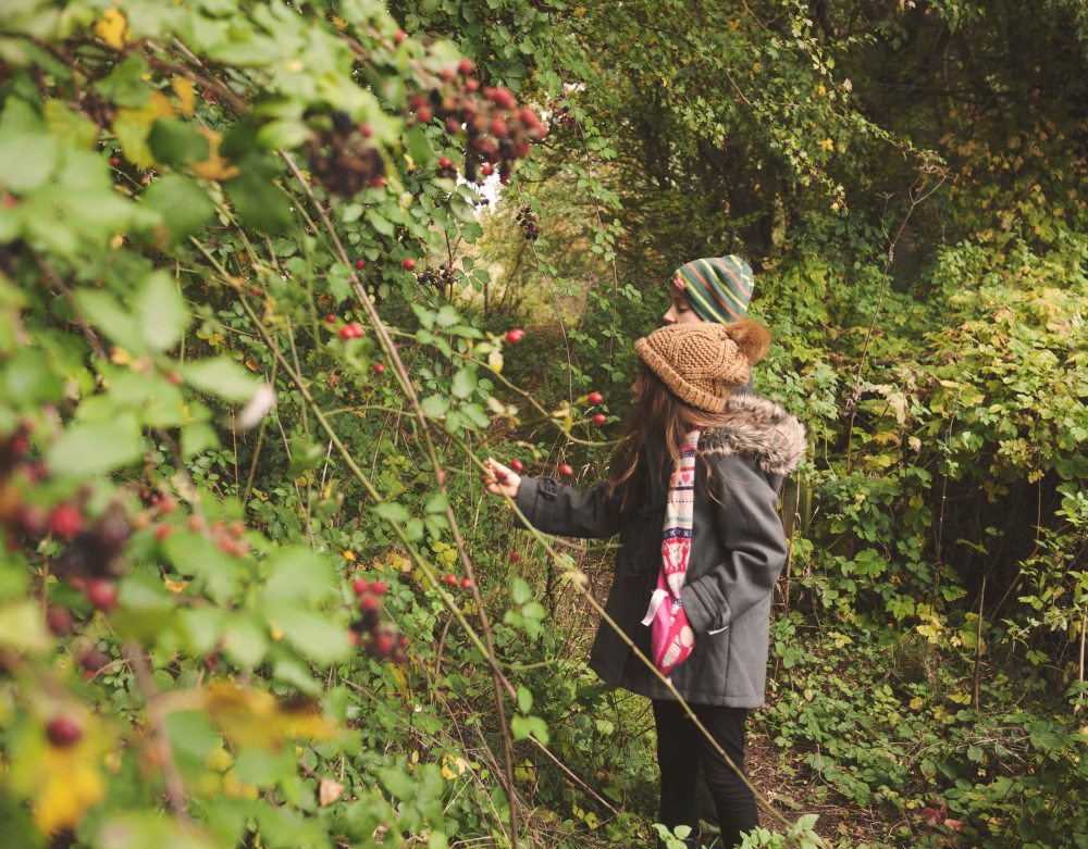 Felix and Flo picking blackberries
